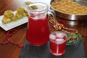 visnesuyu meyve suyu (16)
