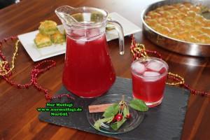 visnesuyu meyve suyu (17)