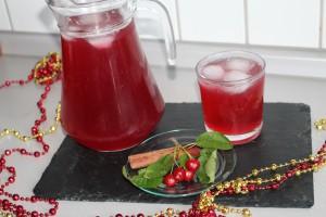 visnesuyu meyve suyu (19)