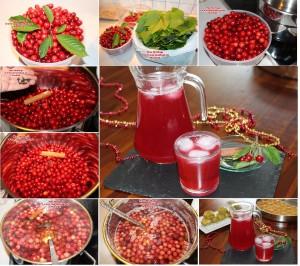 visnesuyu meyve suyu (2)