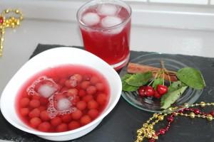 visnesuyu meyve suyu (26)