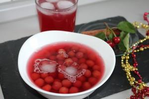 visnesuyu meyve suyu (28)