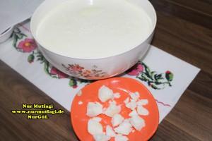 buzlu yogurt ile yogurt nasil mayalanir