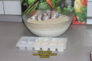buzlukta yogurt mayasi