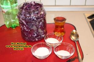 mor lahana tursusu (4)