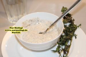 yogurt kürü yogurt ile zayiflama  Yogurt kürü göbek, bölgesel yaglari eritme - zayiflama Kürü, zencefil, nane, tarcin yogurt kürü