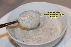 yogurt kürü yogurt ile zayiflama (11)