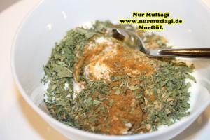 yogurt kürü yogurt ile zayiflama (15)