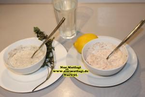 yogurt kürü yogurt ile zayiflama (4)