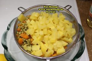 rus salatasi  (2)