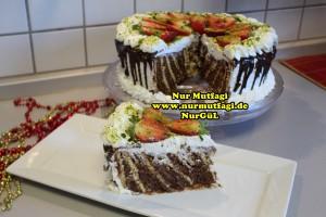 bisküvili yaspasta tarifi (35)