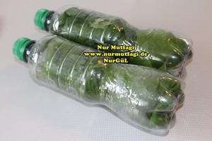 sisede asma yapraki nasil kurulur tarifi (1)