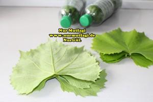 sisede asma yapraki nasil kurulur tarifi (3)