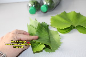 sisede asma yapraki nasil kurulur tarifi (4)