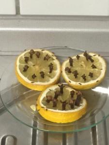 cümbüs sineklerine karsi limon karanfil (1)