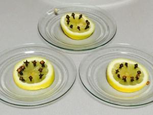 cümbüs sineklerine karsi limon karanfil (3)