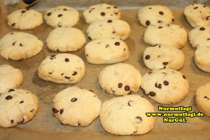 cookies-kurabiye-yilbasi-kurabiyesi-ausstechplatzchen-weihnachtsplatzchen-21