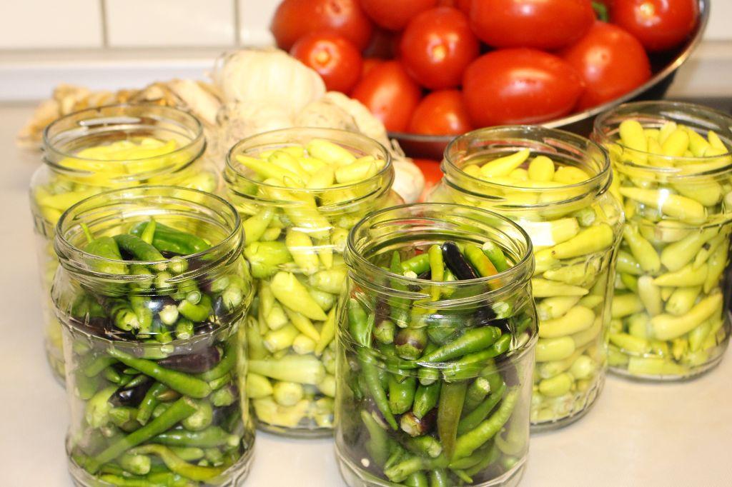 aci süs biber tursusu, cin biber tursu tarifi, domates soslu cin biber tursu tarifi (8)